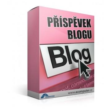 Příspěvek blogu