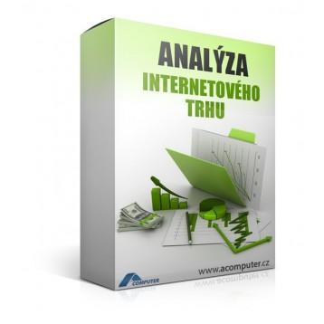 Analýza internetového trhu